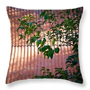 Abandoned Home Abstract Throw Pillow
