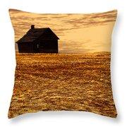 Abandoned Homestead Series Golden Sunset Throw Pillow