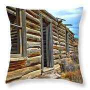 Abandoned Homestead Throw Pillow