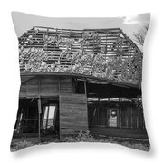 Abandoned In Black And White Throw Pillow