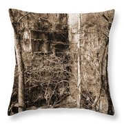 Abandoned Marble Quarry Throw Pillow