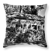 Abandoned Mono Throw Pillow