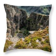 Abandoned Quarry Throw Pillow