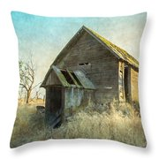 Abandoned Root Cellar Throw Pillow