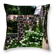 Abandoned Spring House Throw Pillow