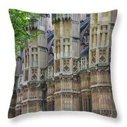 Abbey Walls Throw Pillow