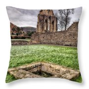 Abbey Well Throw Pillow