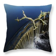 Abbott's Mill Spill Throw Pillow