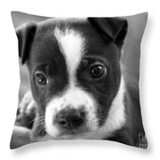 Abby The Rescued Dog Throw Pillow by Deborah Fay