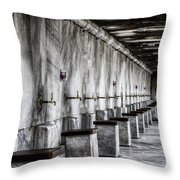 Ablutions Throw Pillow