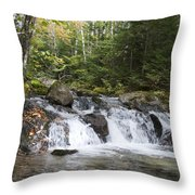 Abol Falls 4392 Throw Pillow
