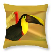 About A Beak  Throw Pillow