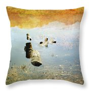 Above And Below Throw Pillow