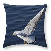 Above Level Throw Pillow