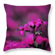 Above The Crowd Throw Pillow