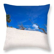 Above The Dunes Throw Pillow