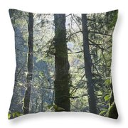 Above The Firs Throw Pillow