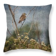 Above The Prairie Throw Pillow