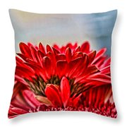 Above The Rest By Diana Sainz Throw Pillow