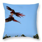 Above The Treetops Throw Pillow