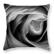 Absence Of Color Throw Pillow