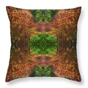 Abstract 164 Throw Pillow