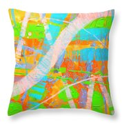 Abstract 23614  Diptych  II Throw Pillow