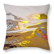 Abstract 3963 Throw Pillow