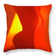 Abstract 4093 Throw Pillow
