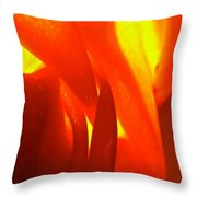Abstract 4094 Throw Pillow