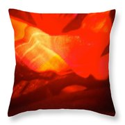 Abstract 4106 Throw Pillow