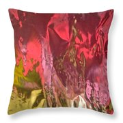 Abstract 4235 Throw Pillow