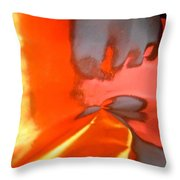 Abstract 4727 Throw Pillow