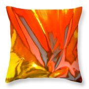 Abstract 4824 Throw Pillow