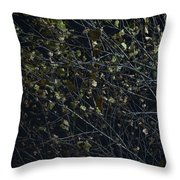 Abstract Background Of Tree At Night Throw Pillow
