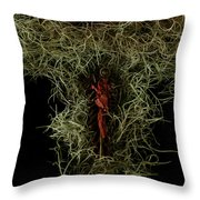 Abstract Christmas Manger Throw Pillow