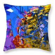 Abstract Curvy 13 Throw Pillow