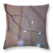 Abstract Dew Drops 2013 Throw Pillow