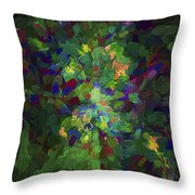 Abstract Series Ex1 Throw Pillow
