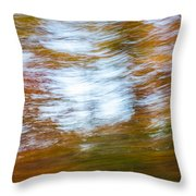Abstract Fall 11 Throw Pillow