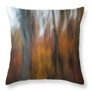 Abstract Fall 13 Throw Pillow