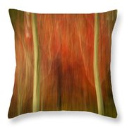 Abstract Fall 14 Throw Pillow