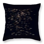 Abstract Fireworks Throw Pillow