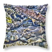 Abstract Fish 3 Throw Pillow