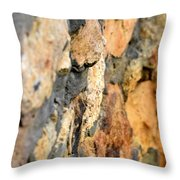 Abstract Natural Stone Throw Pillow