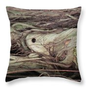 Abstract Nature 12 Throw Pillow