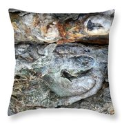 Abstract Nature 13 Throw Pillow