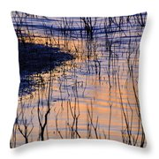 Abstract Nature At Sunset Throw Pillow