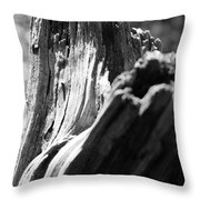 Abstract Of A Broken Tree Throw Pillow