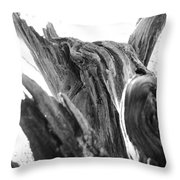 Abstract Of A Fallen Tree Root Throw Pillow